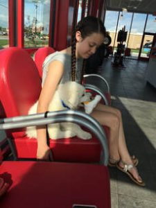 A girl sits in a red chair with a white fluffy Maremma Sheepdog puppy.