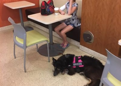 A border collie service dog and his handler in the cafeteria of the hospital.