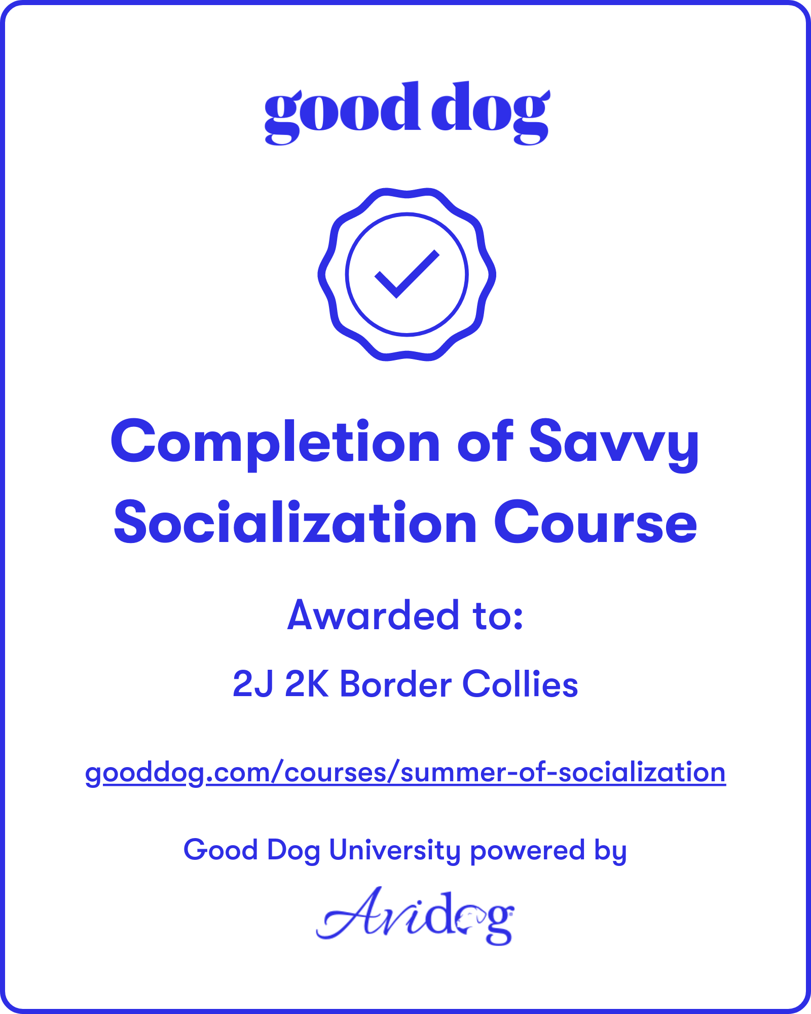 2J 2K Border Collies Avidog Summer of Socialization Badge.