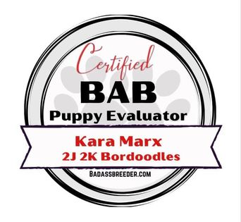 2J 2K Bordoodles certified puppy evaluator badge.