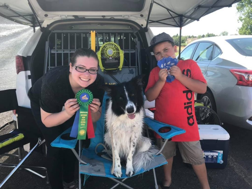 A 2J 2K Border Collie champion with lots of award ribbons.