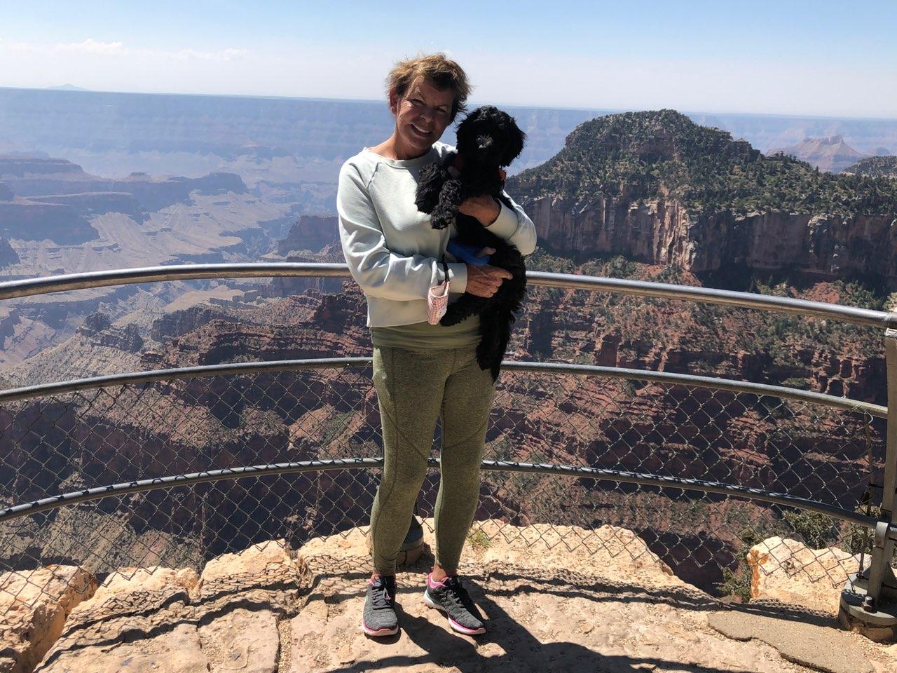 A Bordoodle puppy at the Grand Canyon in Arizona.