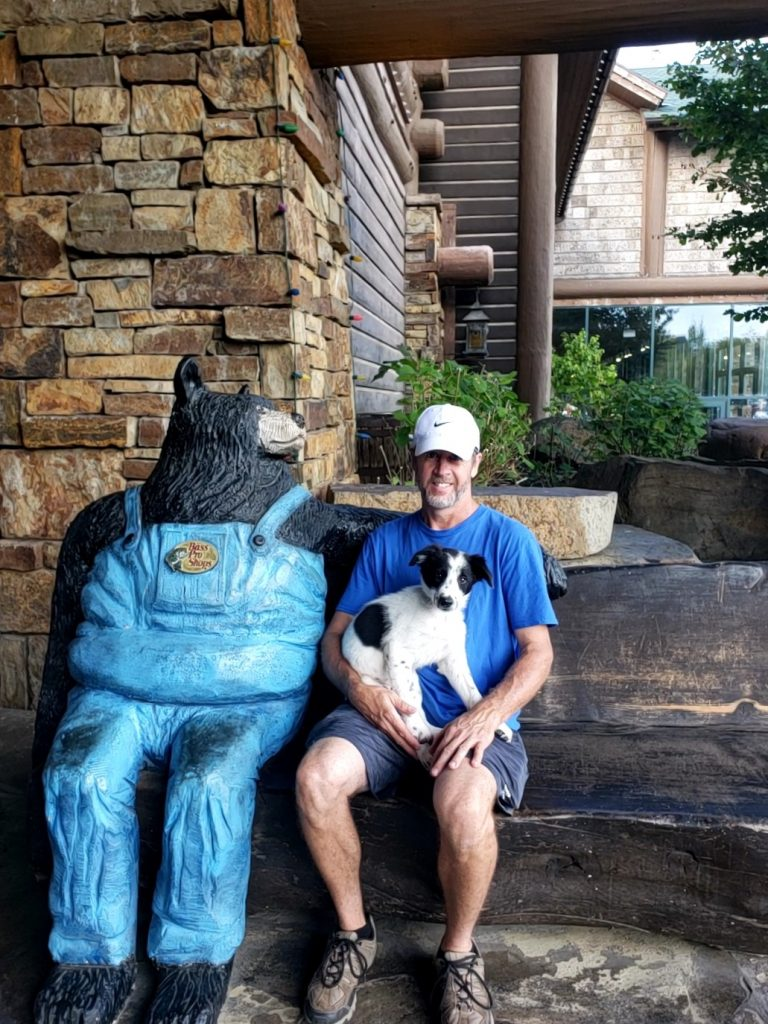 A white and black Border Collie puppy sitting on a mans lap next to a bear at Bass Pro in Springfield, MO.